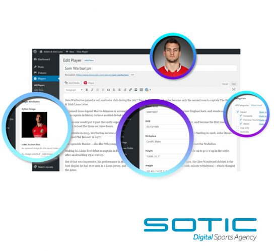 Sotic use the WordPress Content Management System