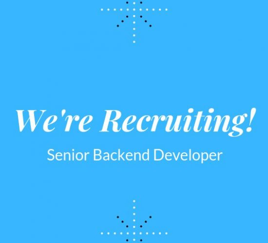Back-end Senior Developer