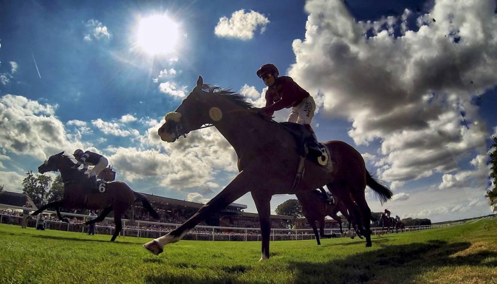 Newmarket horse racing
