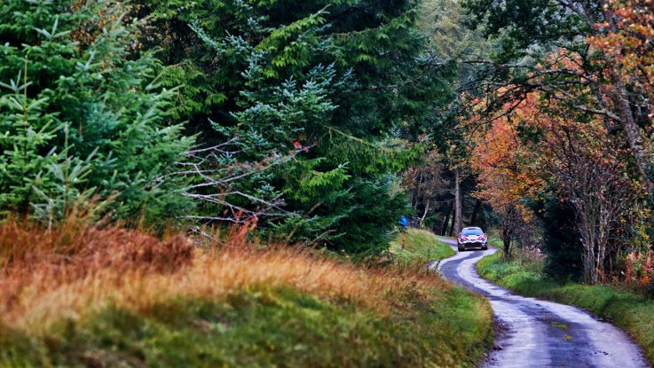 Wales Rally GB | Competitors