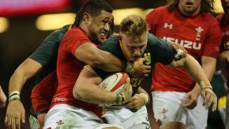 Wales to face Springboks in US capital