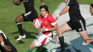 Wales to face Arabian Gulf in Bowl QF