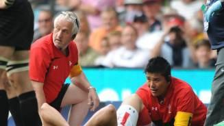 Scarlets refuse to rush Stoddart comeback