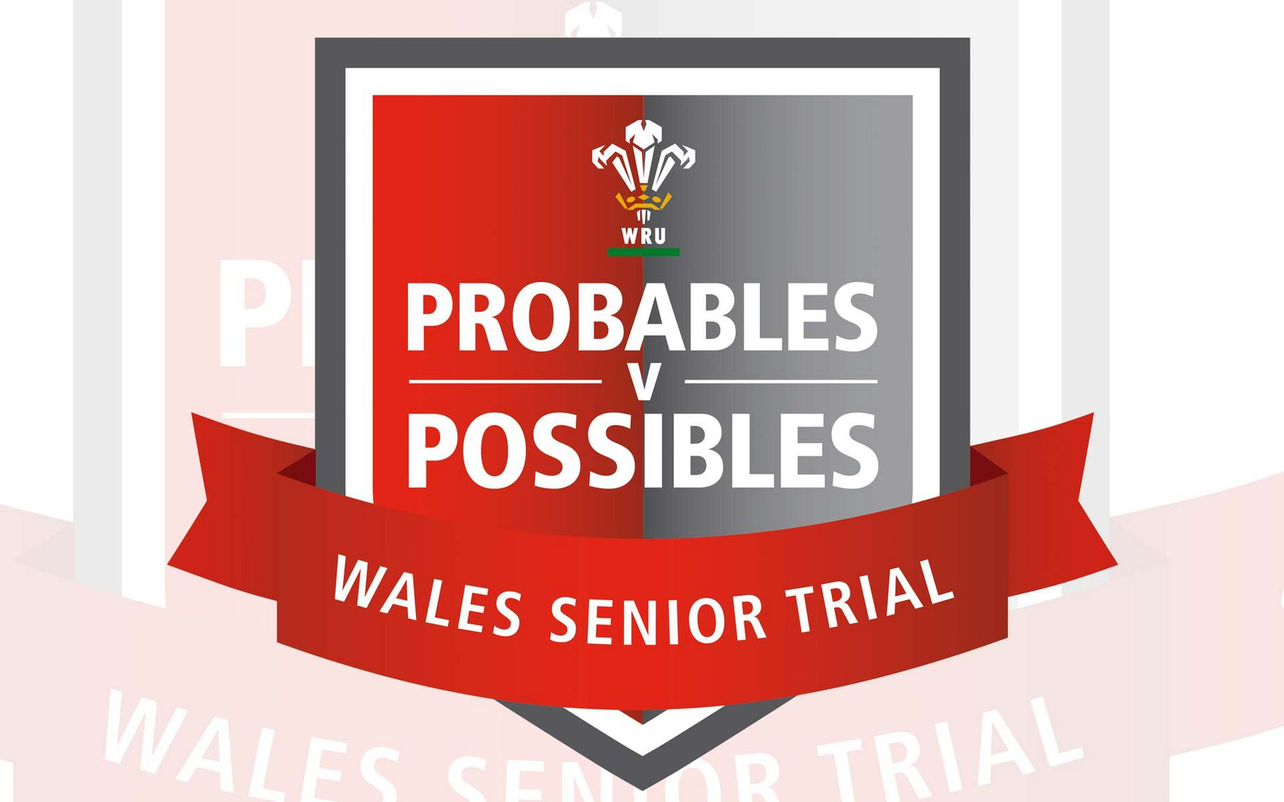 Match Day Details: Wales Senior Trial
