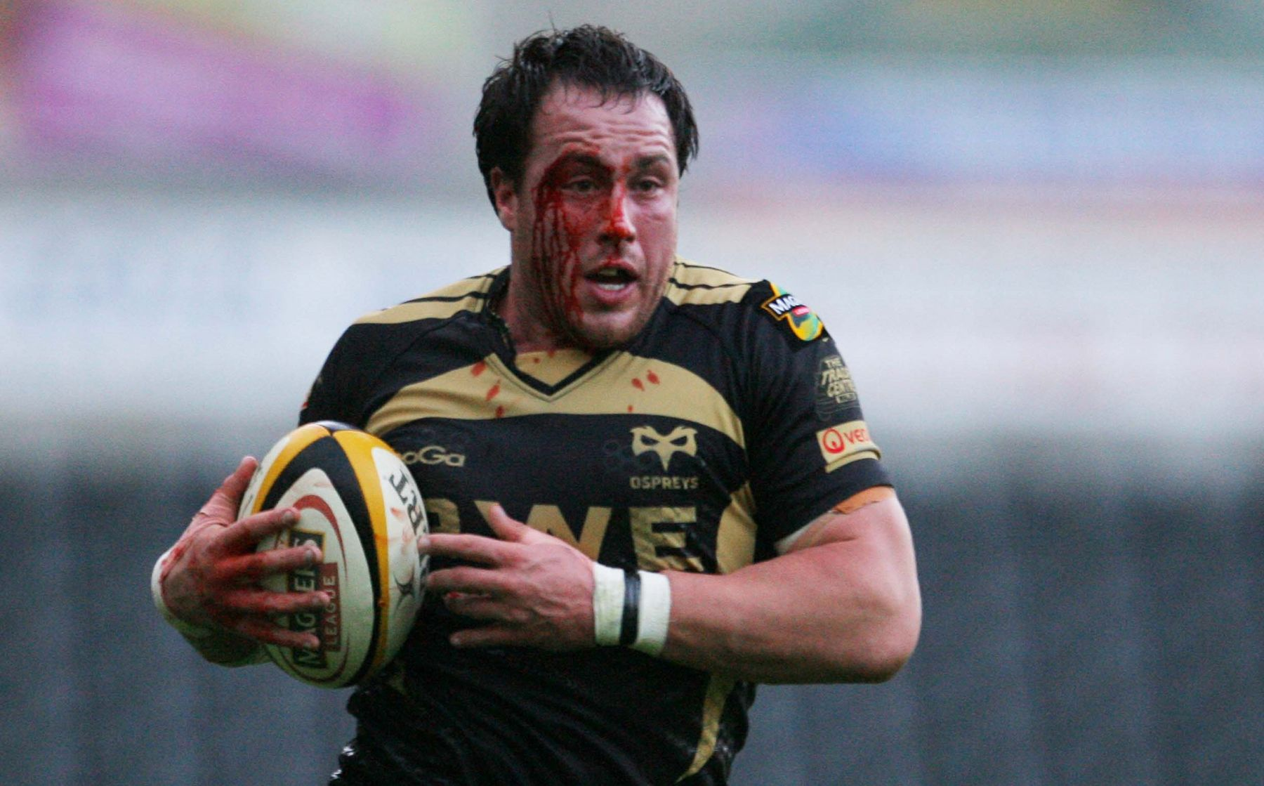 Griffiths returns to Ospreys