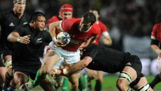 Brave Wales go down fighting