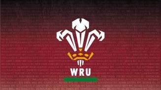 Wales v France post match press conference