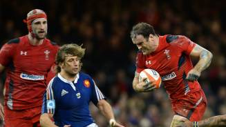 Wales v RGC preview: Jamie Roberts
