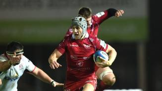 PREVIEWS: Davies adamant Scarlets will fire