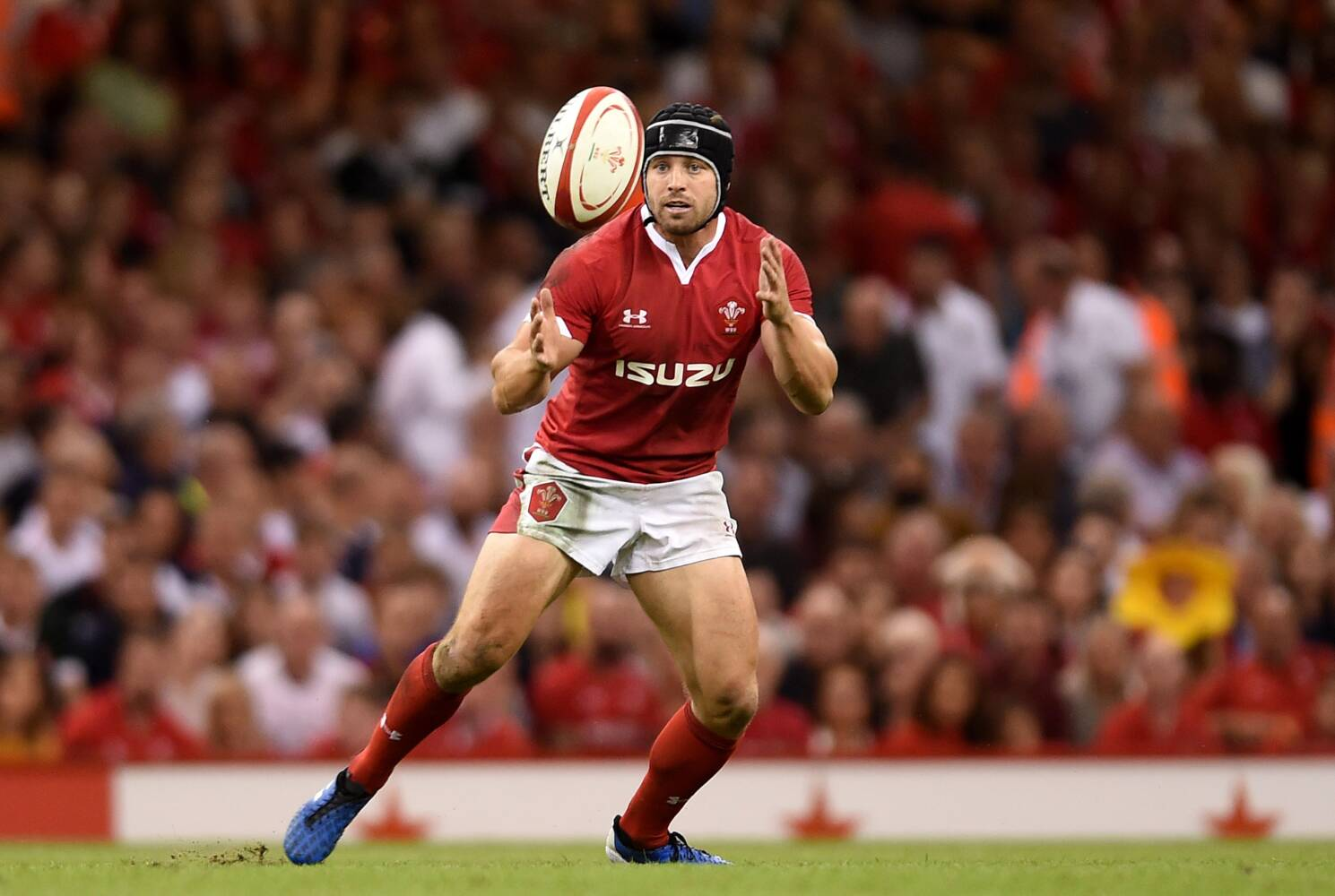 Halfpenny: Recent achievements can inspire us in Japan