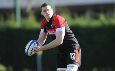 Evans expects Judgement Day to grow