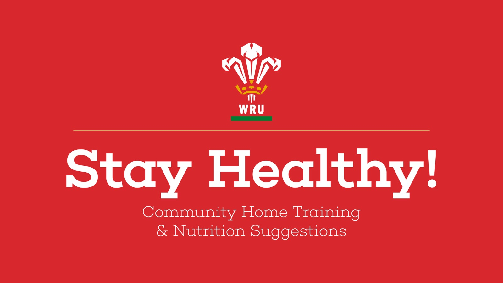 Stay Active and Healthy with Welsh Rugby