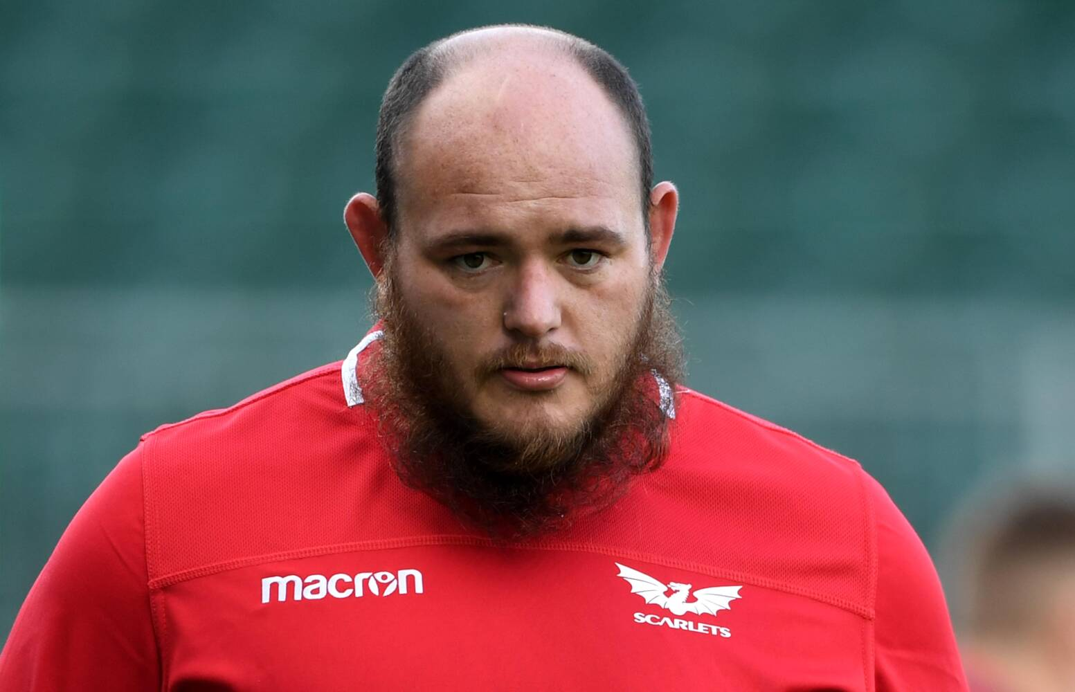Welsh Rugby Union | Wales & Regions | Scholtz can't wait for first Scarlets  start