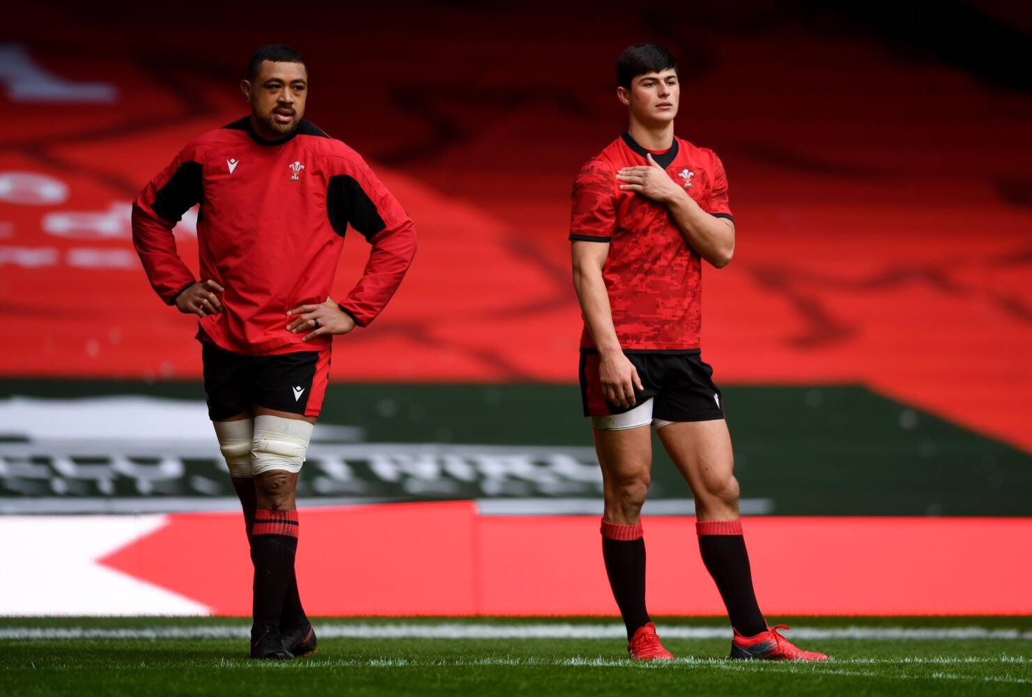Rees-Zammit and Faletau up for coveted Six Nations award