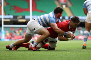 Argentina v Wales