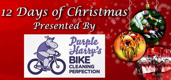 12 Days of Christmas – Day 3, Purple Harry